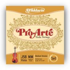 D`ADDARIO J58MM Pro Arte Medium MM